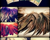 3 Packs of Rooster Schlappen Feather Packets for 12 Dollars, Any Colour, High Quality