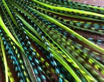 Feather Hair Extensions Neon Bright Green Grizzly Turquoise 6 Long Hair Feathers For Feather Extensions kit with beads and threader