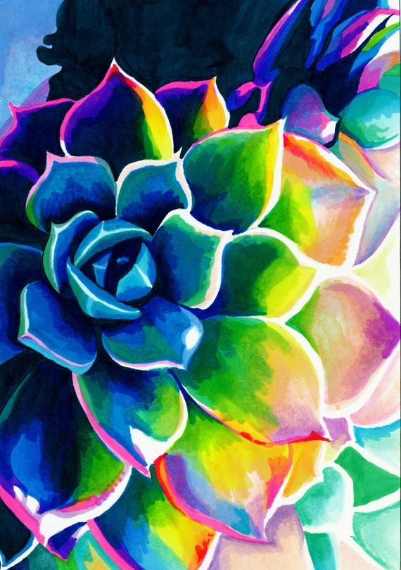 Neon Rainbow Flowers Supplication Succulent Colorful By