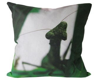 Unique Photo Pillow Case - Macro Photo of Interesting Insect - Insect Pillow Case