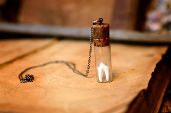 Sterling SIlver Bottled Raccoon Tooth