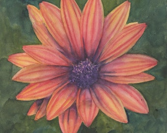 """Print of Daisy Family Flower 6 x 6"""" Watercolor Painting"""