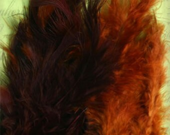 """Petaloo  Feathers  - package of 40 ct  - Chocolate Brown camel 1608-038  approx. 3"""" long x 1/2"""" wide - loose feathers bulk supplies"""