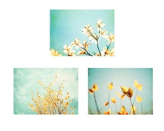 Photo Set, Three Photographs blue yellow gold aqua flower photography nature print set nursery spring branch fine wall art pastel pale 10x10