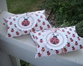 Ladybug  Pillow Box Party Favors with Tags Set of 12