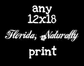 Any 12x18 Florida, Naturally Photograph Photo Print Picture