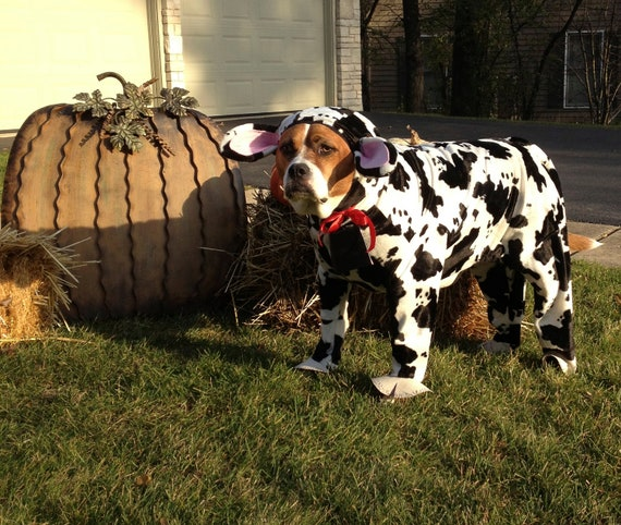 Extra Large Dog Costumes For Halloween