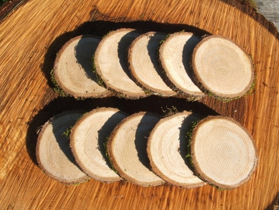 Oak Wood Slices for crafts and projects. 10 x 3 inch unfinished blanks.