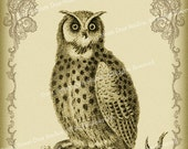Victorian Goth Antique Owl and Scrollwork - 4x6 Inch Single Digital Image - Instant Download & Print