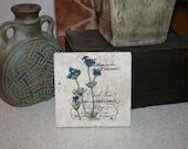 Personlized Tile Coasters, Botanical Garden Nursery , Set of 4