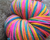 Specimen 161 - 385 yards Hand Dyed variegated orange pink blue and green 100% Superwash Merino Sport Yarn