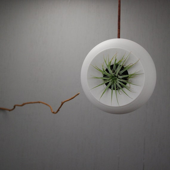 Round Hanging Air Planter