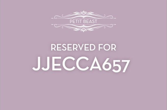 RESERVED for jecca657 // Jellyfish Air Plant // Sea Urchins Hanging Art Wedding Favor