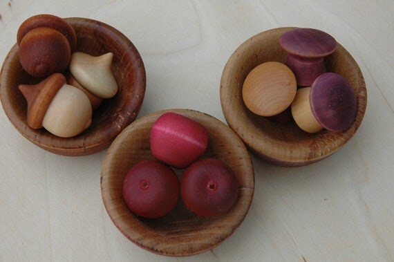 SALE Montessori Autumn Harvest Counting Sorting Bowls Earth Tones