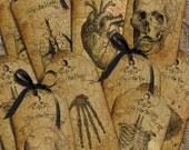 Vintage Anatomy  tags/labels digital collage sheet. DIGITAL DOWNLOAD