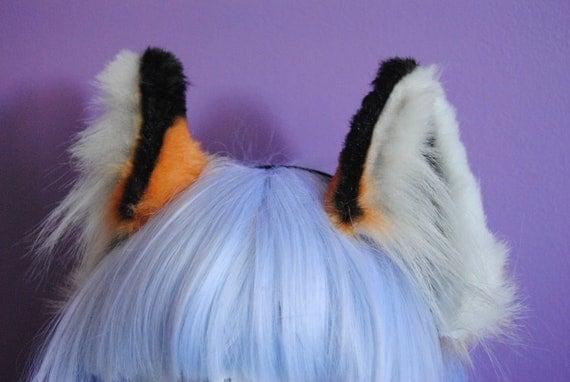 red fox ears