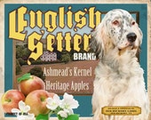 English Setter Small Wooden Crate