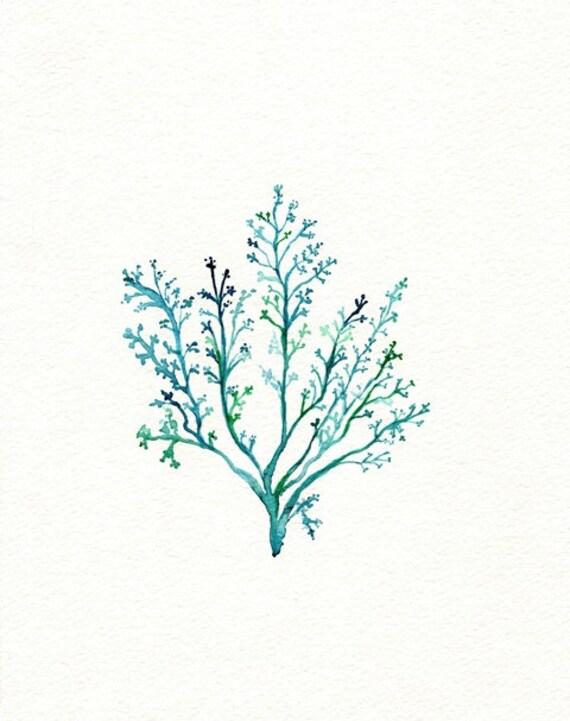 Items Similar To No 1 Sea Fern Watercolor Print Teal