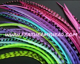 20 Whiting Feather Hair Extension Kit , Real Feathers, Long Feathers