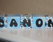 Personalized wooden blocks, match nursery decor/color scheme and a picture prop