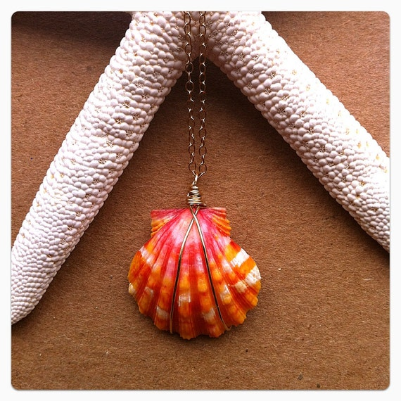 Grade AAA Tiger Striped Sunrise Shell Necklace