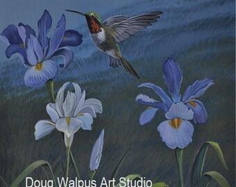 Hummingbird Print, Ruby Throat Hummingbird, Bird Print, Purple Irises, Flowers, Home Decor, Wall Decor, Gifts, Painting, Wildlife Art
