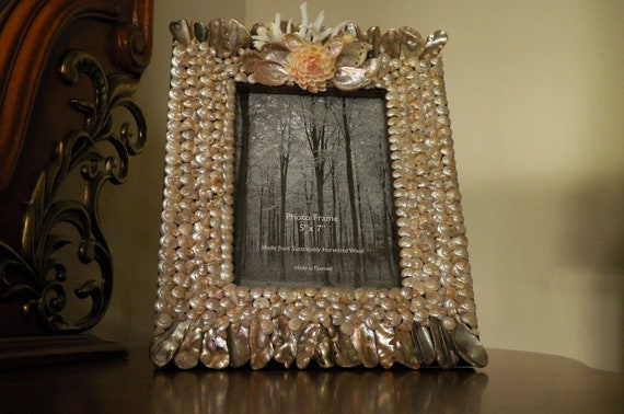 Picture frame with abalone shell pieces and coquina flower