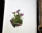 Botanical Watercolor Card Small Pink flowers Polygala or Gaywings