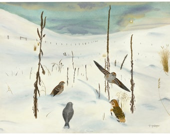 Bird Art Notecard Snow Bunting Tree Sparrows and Junco Near Winter Solstice - prairie landscape with snow