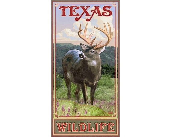 Texas Wildlife Poster