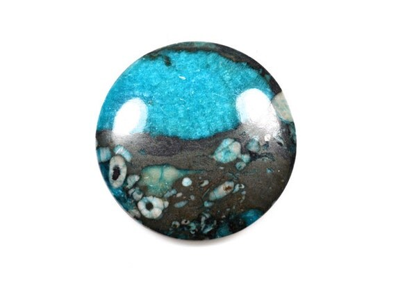 Blue Fossil Crinoid cabochon