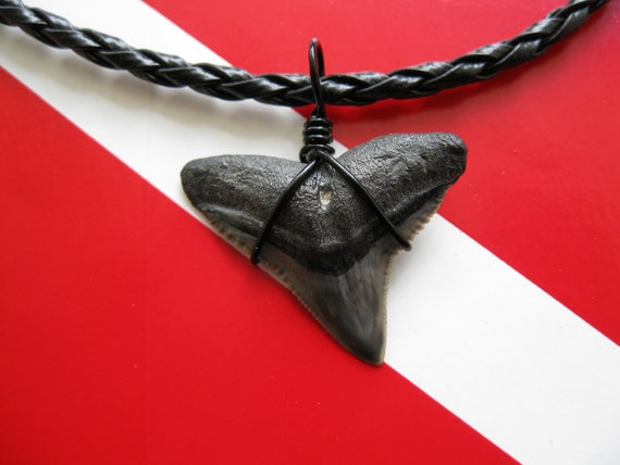 "Shark Tooth Necklace, Bull Shark fossil, Venice-Florida, 18"" Braided leather, ""Black Out"""