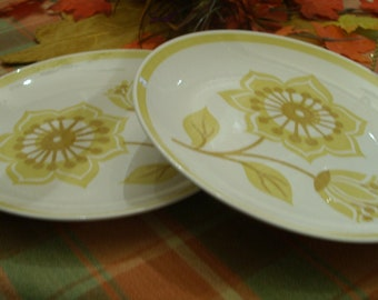 Dinner Plates,  FREE SHIPPING