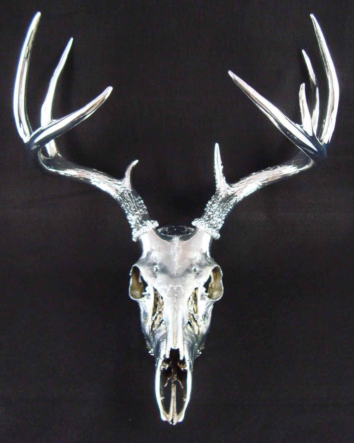 Unique Large Chrome 9 point Deer Skull Antler Art Sculpture Mule Deer European Mount