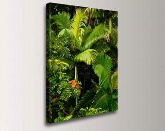 "Nature Photography - Canvas Print - Hawaiian Palm Tree Photo - Tropical Wall Art - ""Fronds"""
