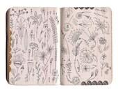 flower doodle ledger, flower sketch, flower print