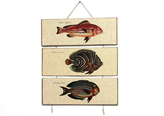 "Retro Wood Wall Art 14x12"" 36x30 cm, Fish Educational Board, MDF Board, Wall Hanger, Art Deco Room Decor, Shabby chic, Nursery room art"
