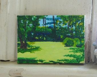 summer landscape enchanted backyard sun and shadows