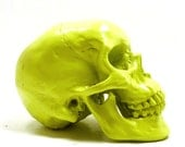neon skull head, goth, anatomy, lime green, spooky, skulls, skulls, avant garde, home decor, neon accents, creepy, october, autumn, heads