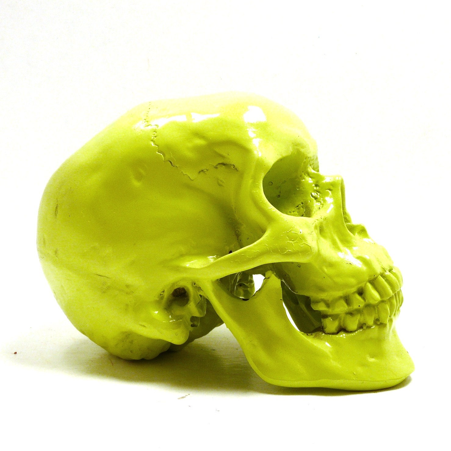 Http Www Etsy Com Listing 109722868 Neon Skull Head Goth Anatomy Lime Green