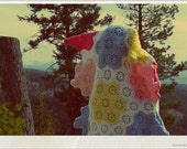 Polaroid No. 1 Postcard