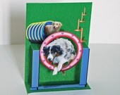 Agility dog Pop up Card Any Occasion