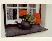 Old Irish Black Iron Kettle & Red Geraniums on Windowsill handmade photo note card