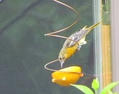 Baltimore Oriole Feeders 25.00 for 2 Wrapped with card ready to gift
