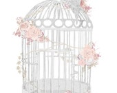 A4 birdcage illustration printed on Textured paper