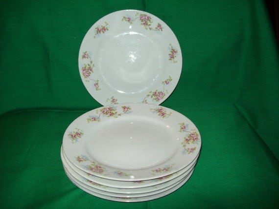 "Six (6), Hand Painted, Nippon China 7 3/4"" Salad Plates. Delicate Rose Pattern."