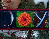 Words Inspired by Nature:  JOY in joyful orange and green (photography, inspirational art, handmade gift)