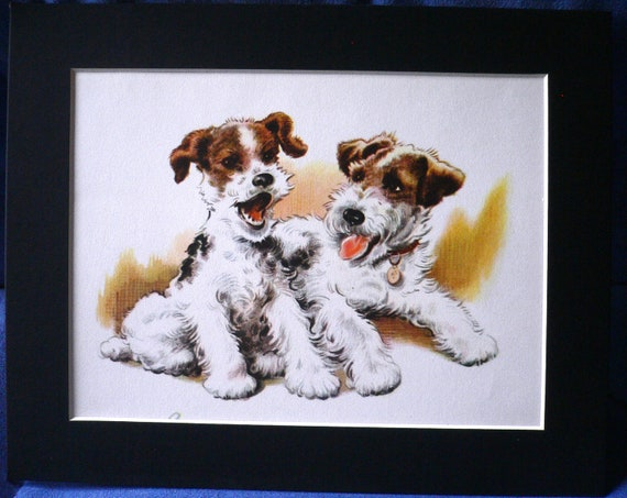 Vintage mounted 1960 Winifred Martin Wire haired fox terrier dog illustration/print
