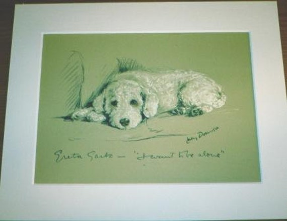 WHITE POODLE DOG Signed mounted 1937 Lucy Dawson Greta Garbo dog plate print Unique gift