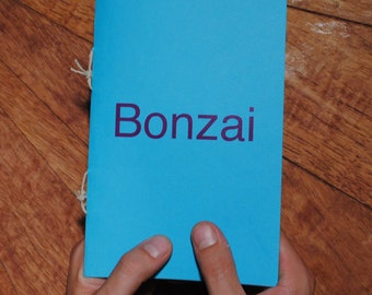 Bonzai - A Zine About What Happens Next